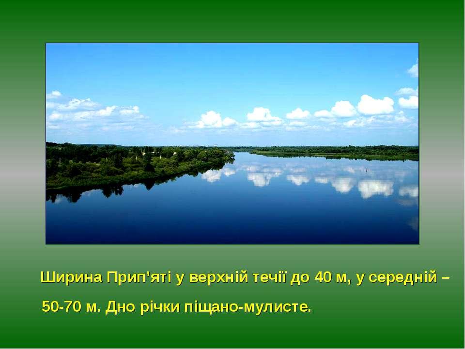 Ширина Прип'яті у верхній течії до 40 м, у середній – 50-70 м. Дно річки піща...