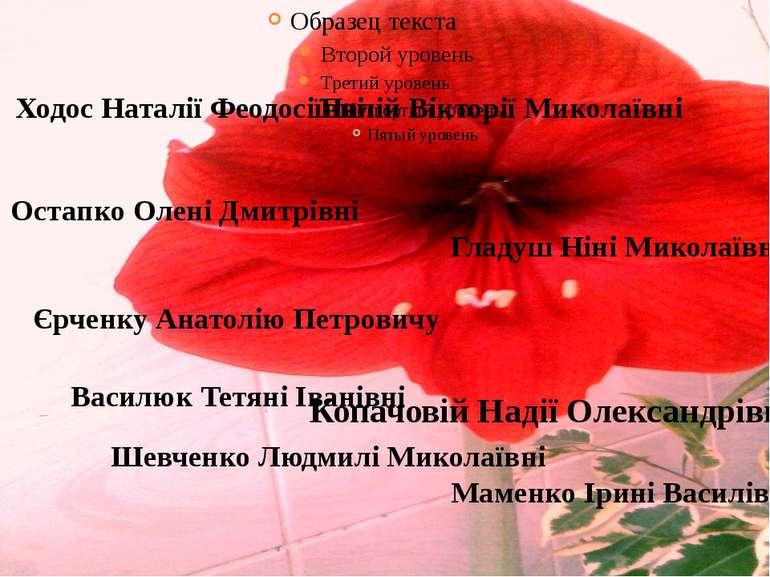 Остапко Олені Дмитрівні Палій Вікторії Миколаївні Василюк Тетяні Іванівні Шев...