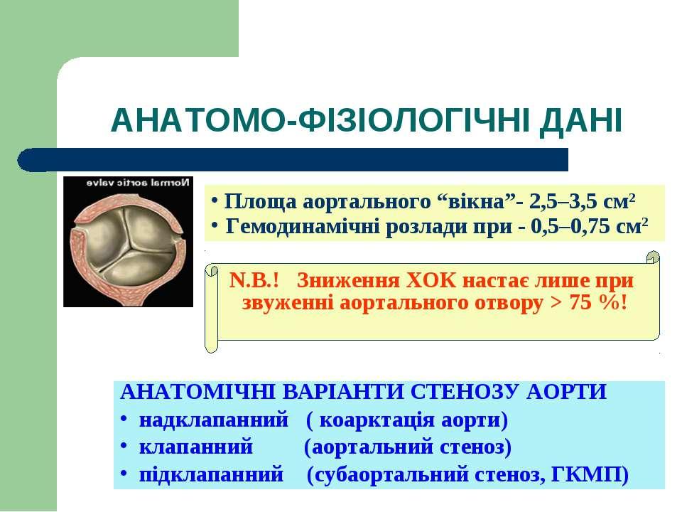 """АНАТОМО-ФІЗІОЛОГІЧНІ ДАНІ Площа аортального """"вікна""""- 2,5–3,5 см2 Гемодинамічн..."""
