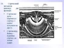 19. Стрічковий механізм виконує дві функції: Стрічкове-дучу - перемотує стріч...
