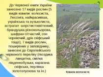 До Червоної книги України занесено 17 видів рослин (5 видів ковили: волосиста...