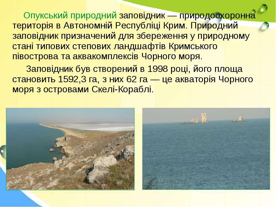 Опукський природний заповідник — природоохоронна територія в Автономній Респу...