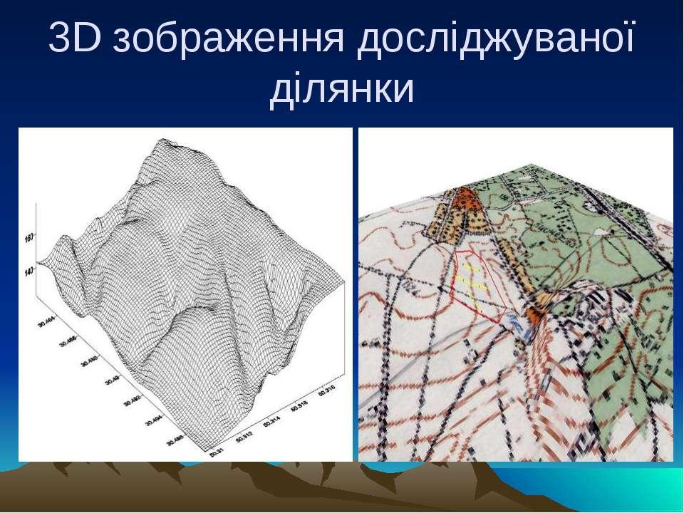 3D зображення досліджуваної ділянки
