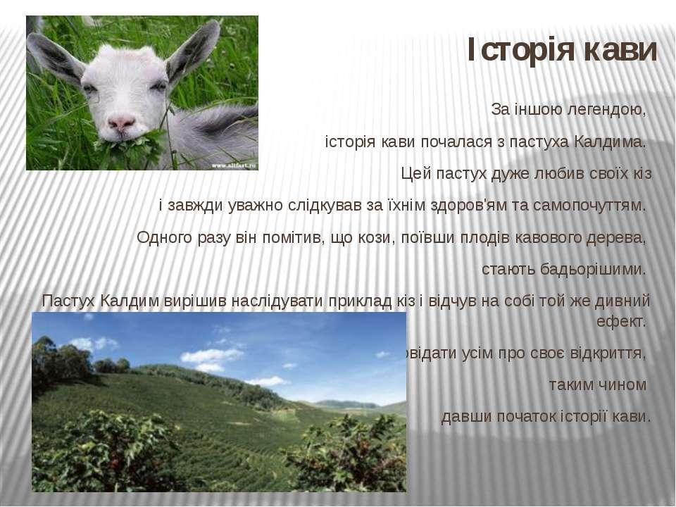 Історія кави За іншою легендою, історія кави почалася з пастуха Калдима. Цей ...