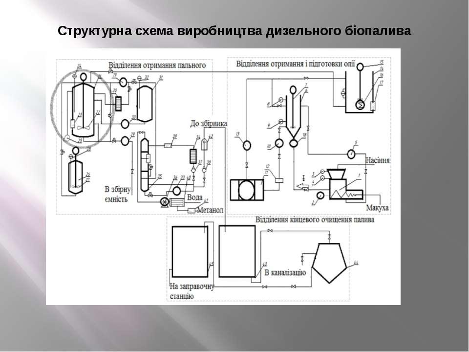 Структурна схема виробництва дизельного біопалива