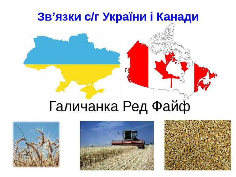 Галичанка Ред Файф Зв'язки с/г України і Канади