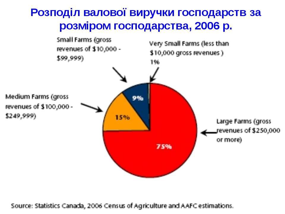Розподіл валової виручки господарств за розміром господарства, 2006 р.