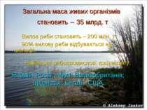 Загальна маса живих організмів становить – 35 млрд. т Вилов риби становить – ...