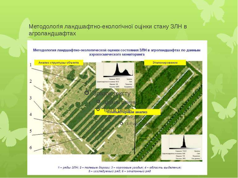 Методологія ландшафтно-екологічної оцінки стану ЗЛН в агроландшафтах