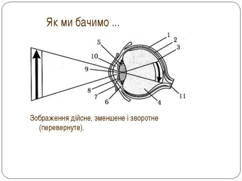 Як ми бачимо ... Зображення дійсне, зменшене і зворотне (перевернуте).