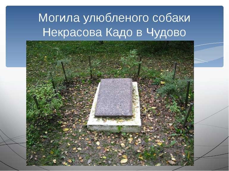 Могила улюбленого собаки Некрасова Кадо в Чудово