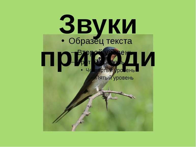 Звуки природи