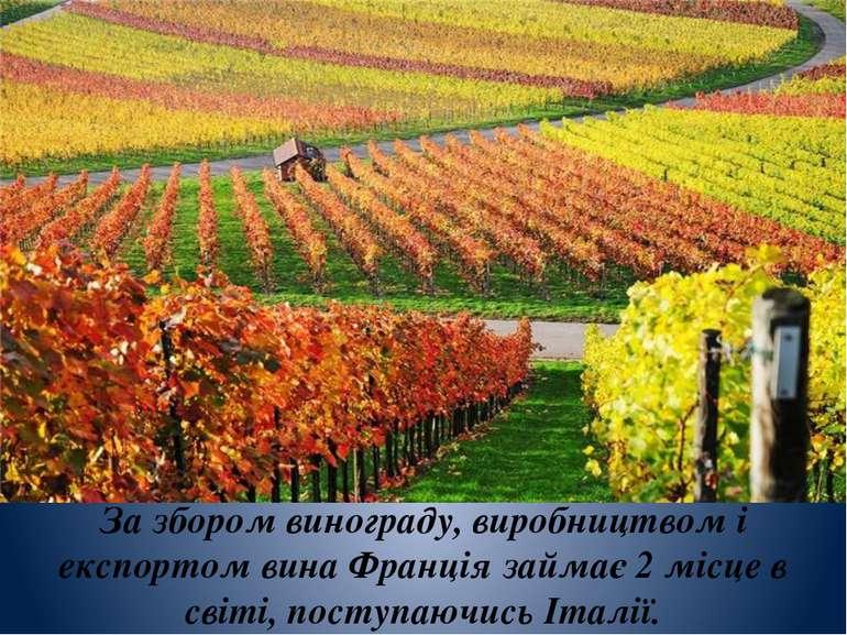 За збором винограду, виробництвом і експортом вина Франція займає 2 місце в с...