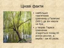 Цікаві факти найбільше пам'ятників Шевченку у Галичині (500 ), де він ніколи ...