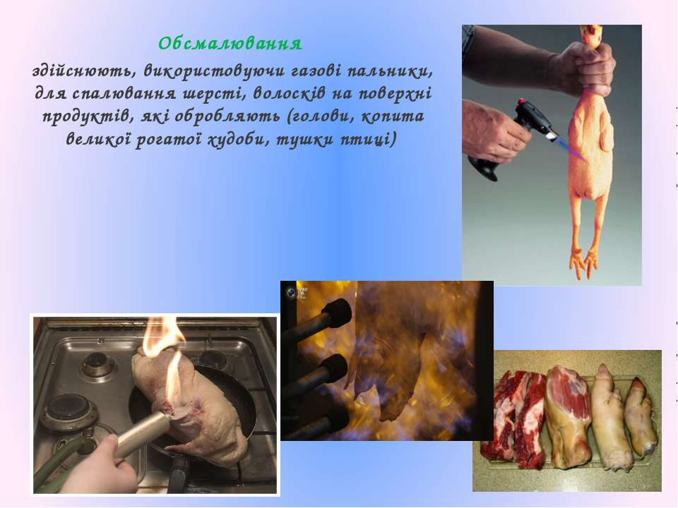 Обсмалювання здійснюють, використовуючи газові пальники, для спалювання шерст...