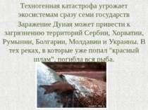 Техногенная катастрофа угрожает экосистемам сразу семи государств Заражение Д...