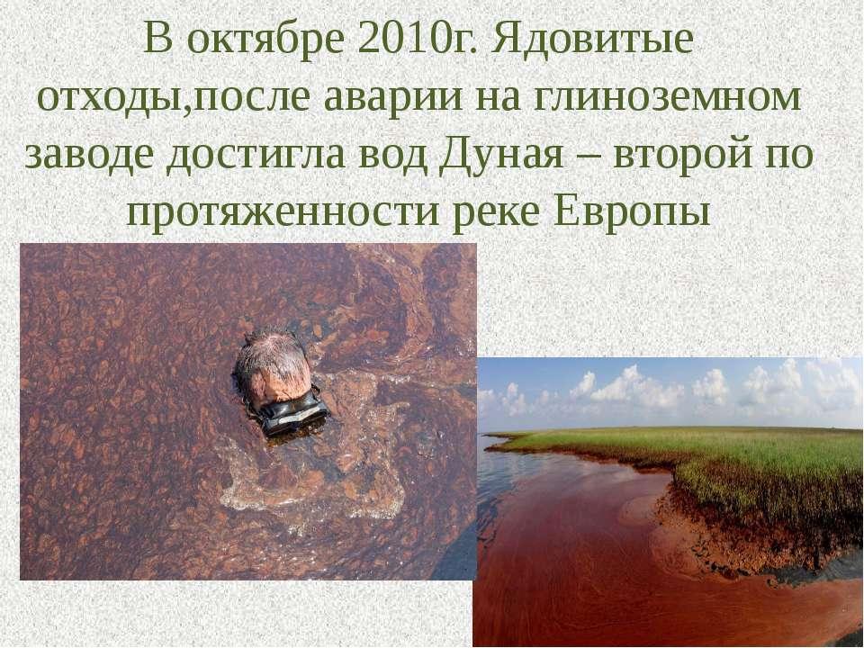 В октябре 2010г. Ядовитые отходы,после аварии на глиноземном заводе достигла ...
