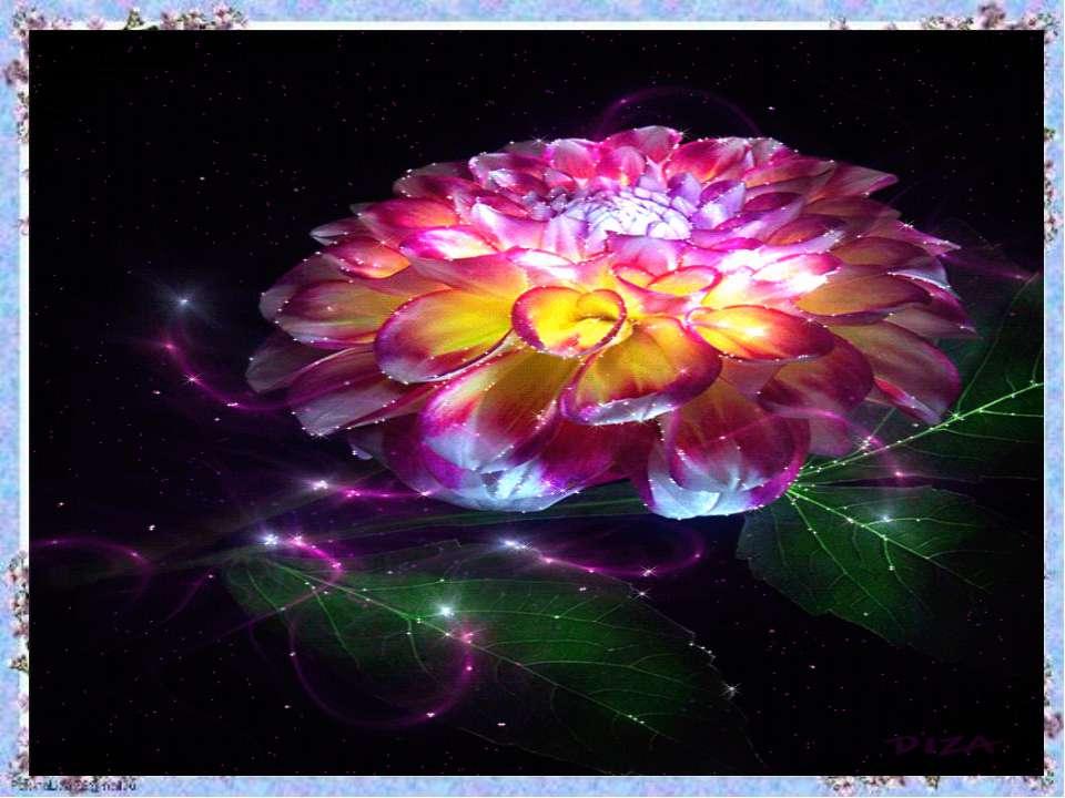 Квітка щастя