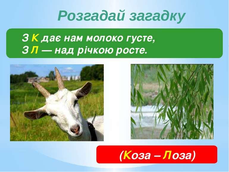 З К дає нам молоко густе, З Л — над річкою росте. (Коза – Лоза) Розгадай загадку