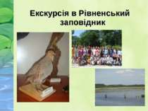 Екскурсія в Рівненський заповідник