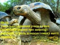 Мета: Узагальнити знання учнів з теми. Поглибити знання про амфібій і рептилі...