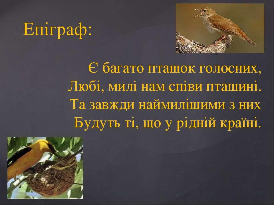 Епіграф: Є багато пташок голосних, Любі, милі нам співи пташині. Та завжди на...