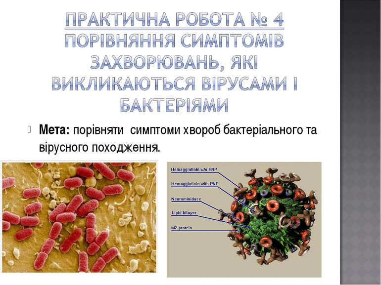 Мета: порівняти симптоми хвороб бактеріального та вірусного походження.