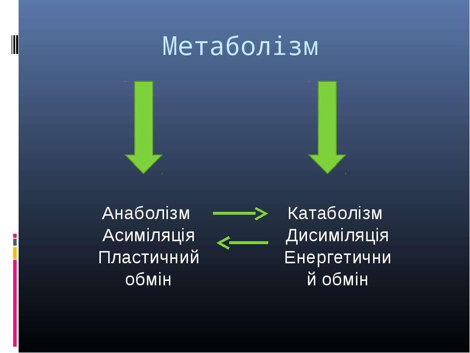 Метаболізм Анаболізм Асиміляція Пластичний обмін Катаболізм Дисиміляція Енерг...