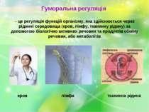 Гуморальна регуляція – це регуляція функцій організму, яка здійснюється через...