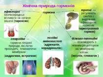 гормони стероїдні — гормони ліпідної природи, які легко проходять плазматичні...