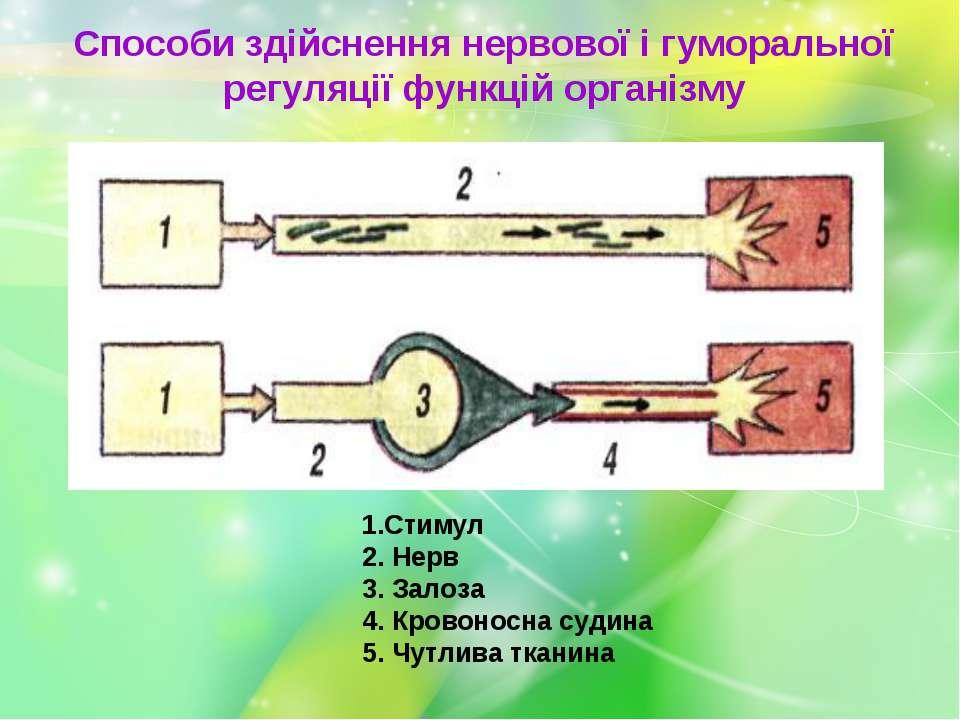 Способи здійснення нервової і гуморальної регуляції функцій організму 1.Стиму...