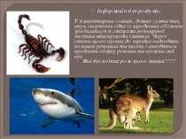 Інформація для роздумів: У плацентарних ссавців, деяких сумчастих, акул, скор...