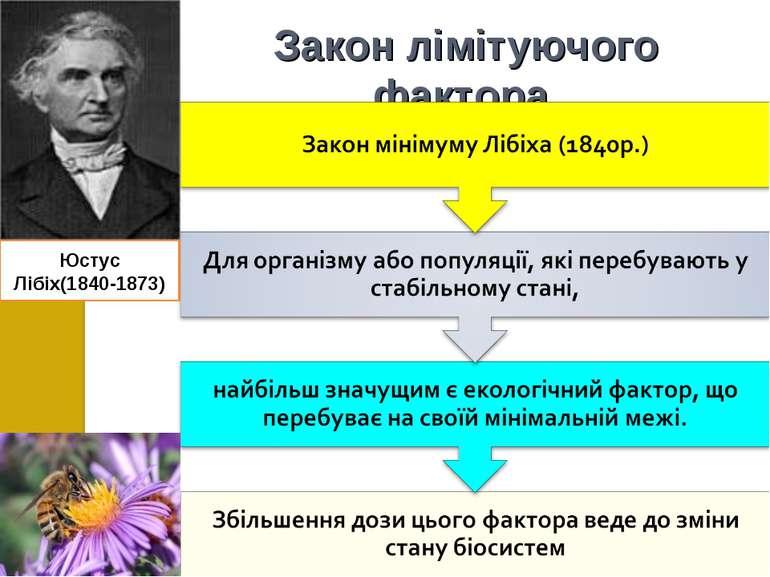 Закон лімітуючого фактора Юстус Лібіх(1840-1873)