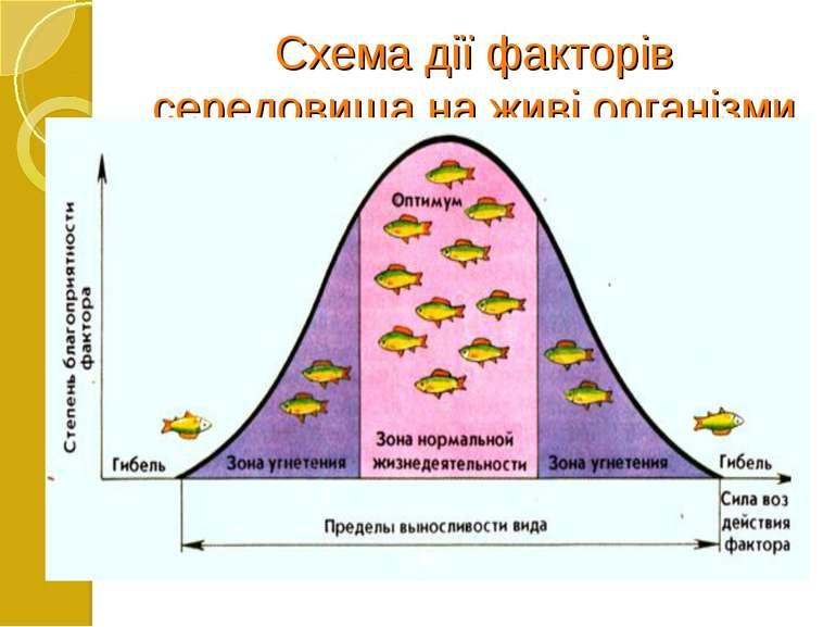 Схема дії факторів середовища на живі організми