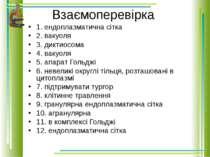 Взаємоперевірка 1. ендоплазматична сітка 2. вакуоля 3. диктиосома 4. вакуоля ...