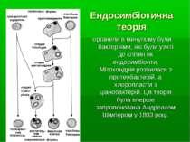 Ендосимбіотична теорія органели в минулому були бактеріями, які були узяті до...