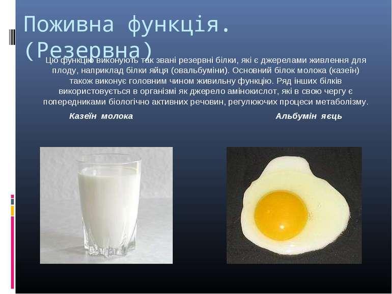 Поживна функція. (Резервна) Цю функцію виконують так звані резервні білки, як...