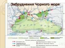 Забруднення Чорного моря