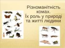 Різноманітність комах. Їх роль у природі та житті людини.