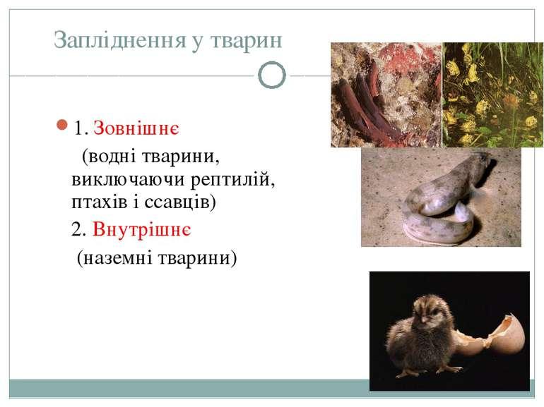 Запліднення у тварин 1. Зовнішнє  (водні тварини, виключаючи рептилій, пт...