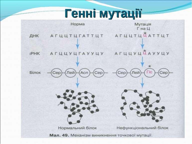 Генні мутації