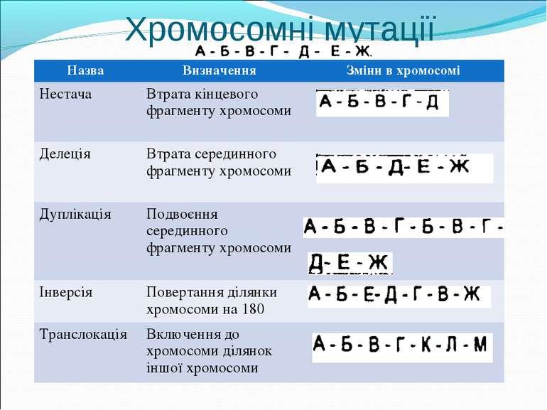 Хромосомні мутації Назва Визначення Зміни в хромосомі Нестача Втрата кінцевог...