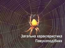 Загальна характеристика Павукоподібних