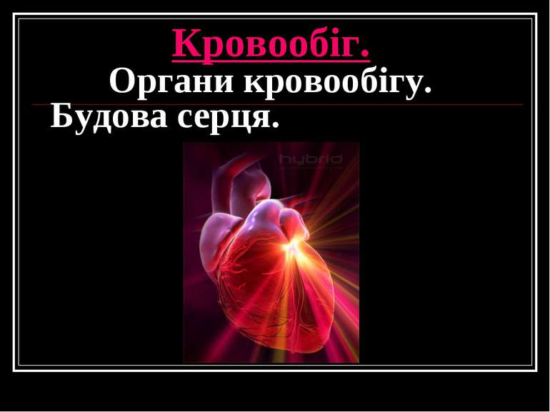 Кровообіг. Органи кровообігу. Будова серця.
