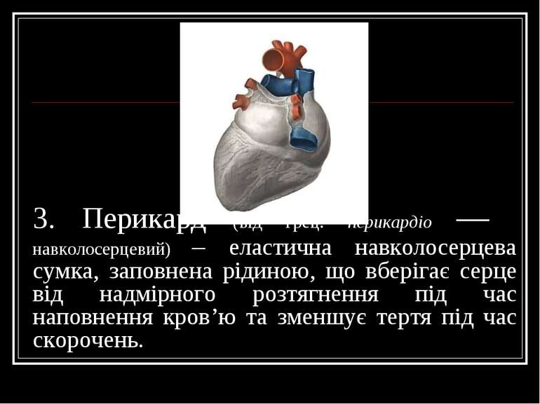 3. Перикард (від грец. перикардіо — навколосерцевий) – еластична навколосерце...