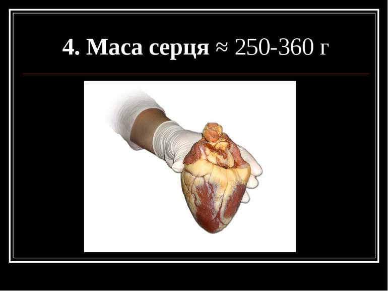 4. Маса серця ≈ 250-360 г