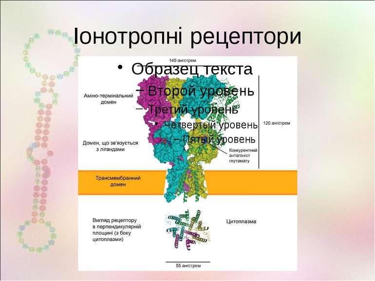 Іонотропні рецептори