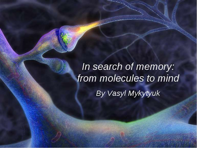 In search of memory: from molecules to mind By Vasyl Mykytyuk