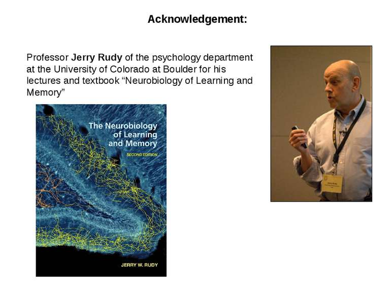 Acknowledgement: Professor Jerry Rudy of the psychology department at the Uni...