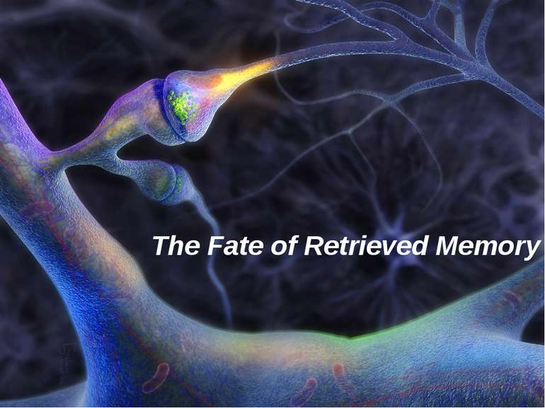 The Fate of Retrieved Memory